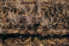 Peat mining. An aerial view of a bog and the field on which peat mining is carried out, Russia stock image