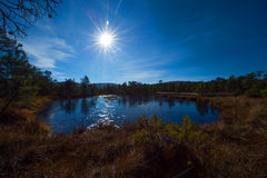 Peat moss and Mohos lake, Romania. Royalty Free Stock Photography