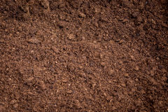 Peat moss soil. For cultivation vegetable royalty free stock image