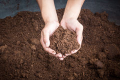 Peat moss soil on hand woman. Close up stock photography