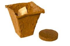 Peat pot Royalty Free Stock Photo