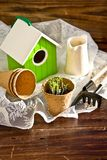 Peat pots, bird-house, seedlings and garden tools Royalty Free Stock Photos