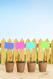 Peat pots with multicolored nameplates stand near wooden fence Royalty Free Stock Photography