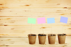 Peat pots with paper nameplates on sticks against woods Stock Photography