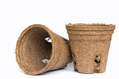 Peat pots for seedlings Royalty Free Stock Photo