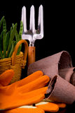 Peat pots for seedlings, rakes, orange gloves, onion seedlings a Stock Photo