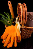 Peat pots for seedlings, rakes, orange gloves, onion seedlings a Royalty Free Stock Image