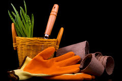Peat pots for seedlings, rakes, orange gloves, onion seedlings a Royalty Free Stock Images