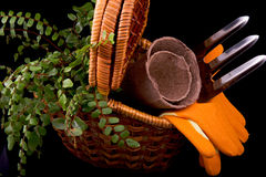 Peat pots for seedlings, rakes, orange gloves, plant and basket Stock Photography
