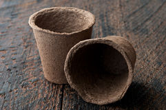 Peat Pots. Two Peat Pots on is  wooden background Royalty Free Stock Image