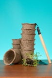 Peat pots and watercress Stock Image