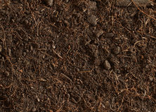 Peat soil texture background Stock Image