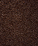 Peat Soil Stock Photography