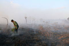 Peatland fires in west aceh Stock Photos
