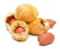 Peatnuts en shell Imagenes de archivo
