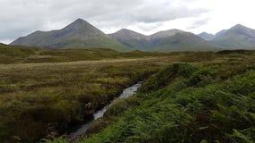 Peaty κολπίσκος, Σκωτία στοκ φωτογραφία με δικαίωμα ελεύθερης χρήσης