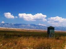 Peau avec les prairies sèches Image stock