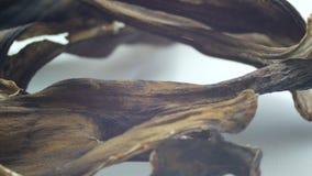 Peau de banane noire sèche corrompue sur une fin blanche de macro de fond vers le haut de vue banque de vidéos