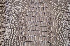 Peau de crocodile Photographie stock libre de droits