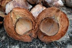 Peau de noix de coco Image libre de droits