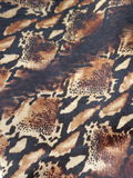 Peau de serpent de vipère de Gaboon images stock