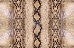 Peau de serpent, reptile Images libres de droits