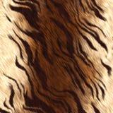 Peau de tigre illustration de vecteur