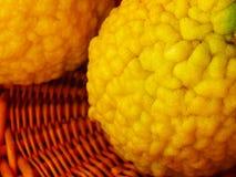 Peau jaune froissée de citron dans un panier, Espagne photographie stock