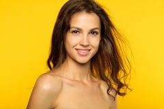 Peau lisse de beauté de wellnes de santé de cheveux femelles de fille image libre de droits