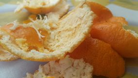Peau sèche d'orange sur le plancher photos libres de droits