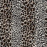 Peau texturisée normale de léopard Photo libre de droits