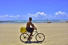 Peba plaża Brazylia fotografia stock