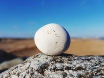 Pebbel su una roccia Fotografia Stock Libera da Diritti
