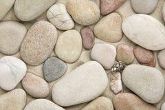 Pebble Royaltyfri Bild