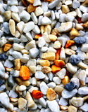 Pebble Stock Image
