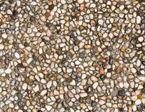 Pebble background1 Stock Photography