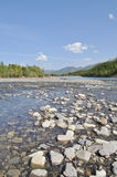 Pebble Bank of a mountain river. Stock Photos