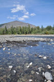 Pebble Bank of a mountain river. Royalty Free Stock Photography