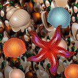 Pebble Beach с seashells и морской звездой Стоковая Фотография RF