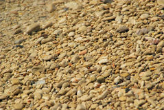 Pebble on the beach Stock Image