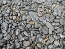 Pebble Beach. Detail of dark pebble beach glimmering in the sunlight Royalty Free Stock Photography