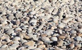 Pebble Beach Arkivbilder