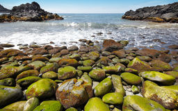 Pebble beach in Agua de Pau, Azores. Portugal Royalty Free Stock Photography