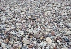 Pebble Beach all'inizio di una pioggia Fotografie Stock Libere da Diritti