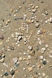 Pebble Beach Background Stock Image