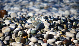 Pebble beach background Stock Images
