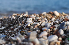 Pebble Beach in Budua Fotografie Stock