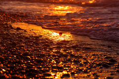 Pebble beach close-up with surfing sea in sunset light Royalty Free Stock Photography