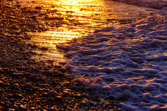 Pebble beach close-up with surfing sea in sunset light Royalty Free Stock Photo