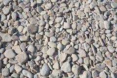 Pebble beach closeup. Closeup shot of pebble beach surface. Kamenjak, Croatia Royalty Free Stock Photos